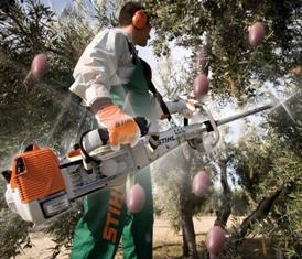 Scuotitore stihl olive sp 481
